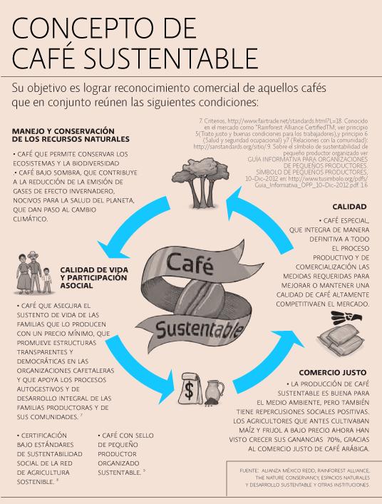 Arte e Ideas Café sustentable