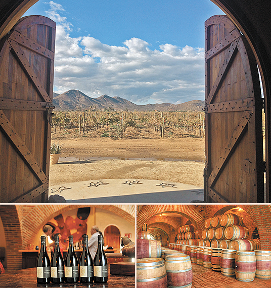 Valle Guadalupe