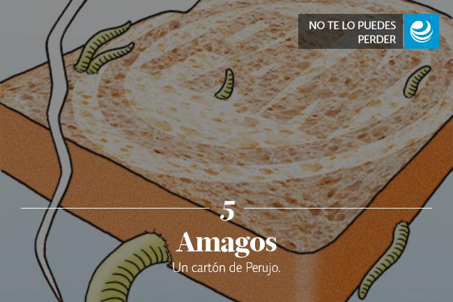 Amagos